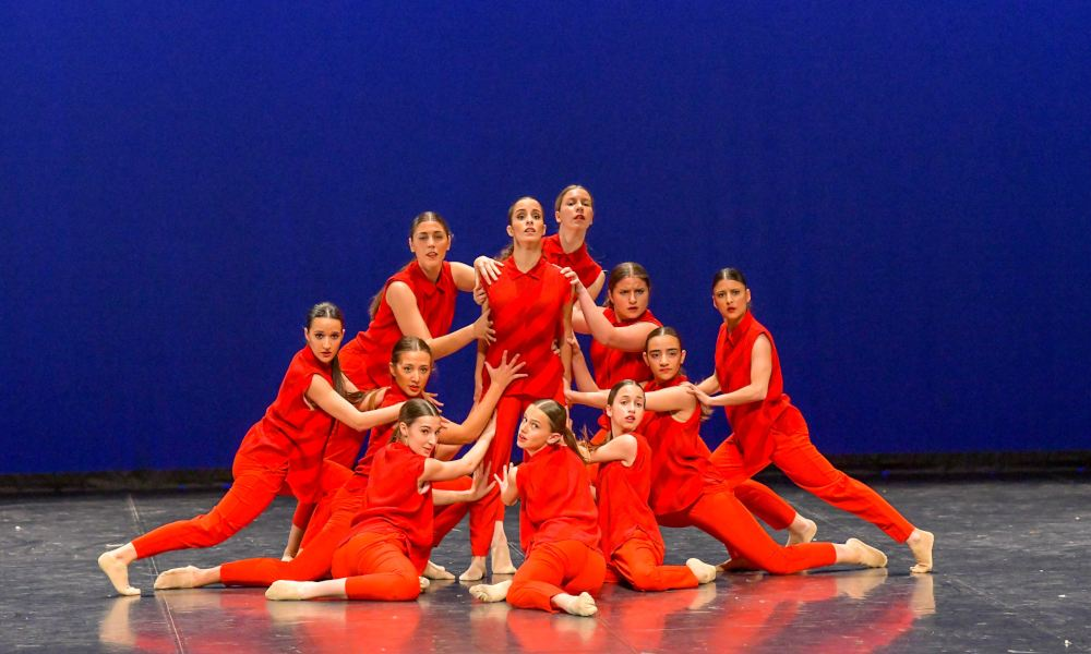 American Dance School - Stardanze